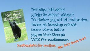 Workshop i Positiv vardagslydnad
